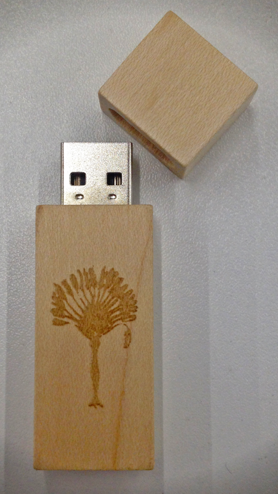 Halved Moons & Hooded Mountains - Traveller's Tree USB