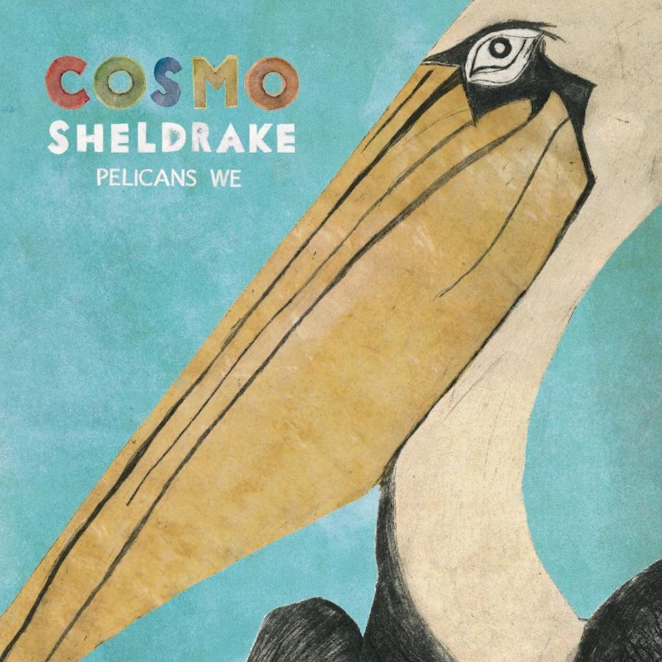 Pelicans We – Cosmo Sheldrake