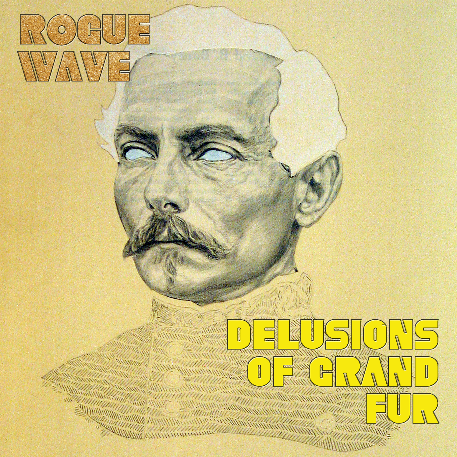 """Rogue Wave - Delusions of Grand Fur 12"""" LP"""