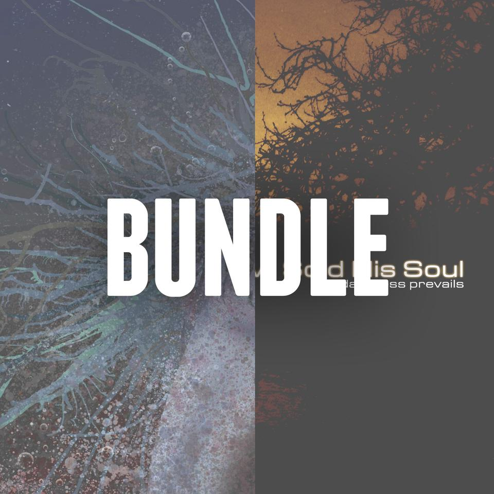 DSHS Digital Bundle